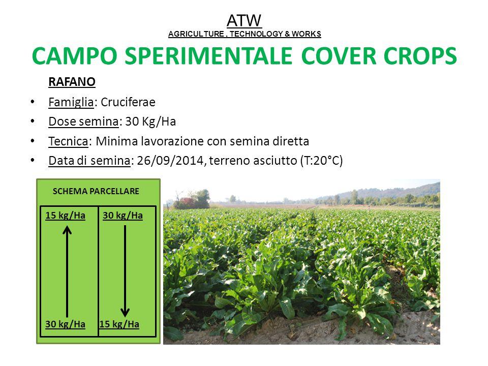 ATW AGRICULTURE, TECHNOLOGY & WORKS CAMPO SPERIMENTALE COVER CROPS RAFANO Famiglia: Cruciferae Dose semina: 30 Kg/Ha Tecnica: Minima lavorazione con s