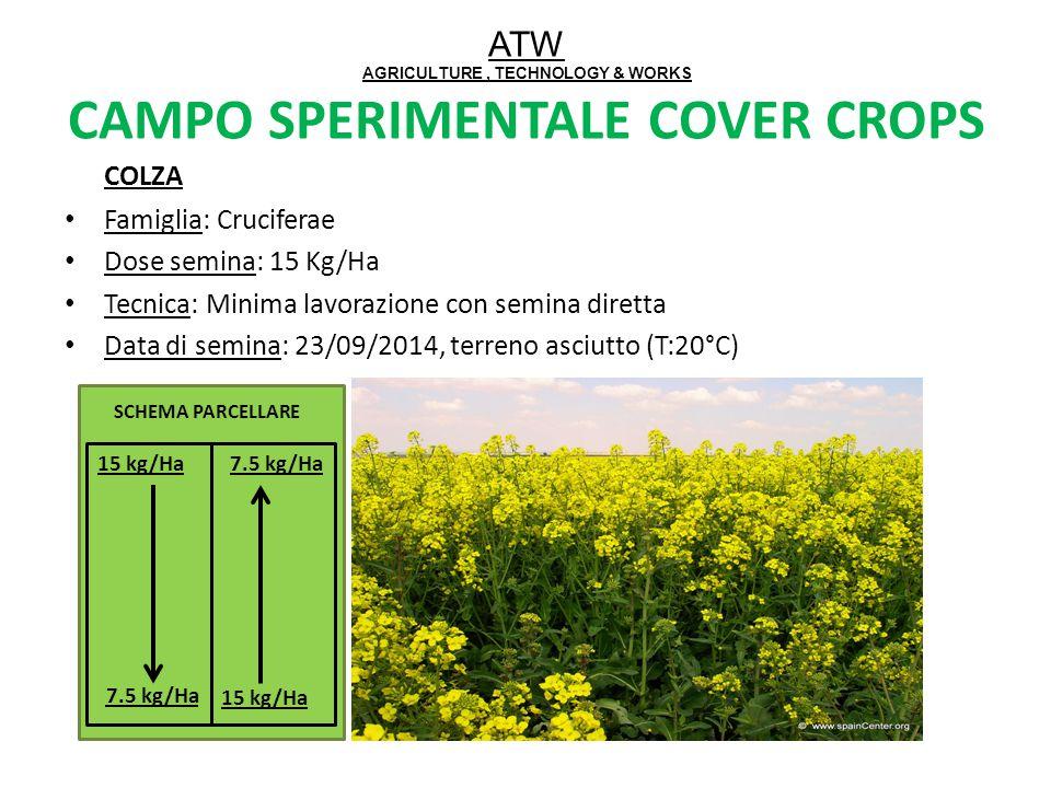 ATW AGRICULTURE, TECHNOLOGY & WORKS CAMPO SPERIMENTALE COVER CROPS COLZA Famiglia: Cruciferae Dose semina: 15 Kg/Ha Tecnica: Minima lavorazione con se