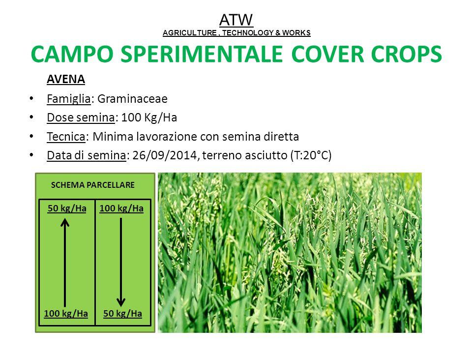 ATW AGRICULTURE, TECHNOLOGY & WORKS CAMPO SPERIMENTALE COVER CROPS AVENA Famiglia: Graminaceae Dose semina: 100 Kg/Ha Tecnica: Minima lavorazione con