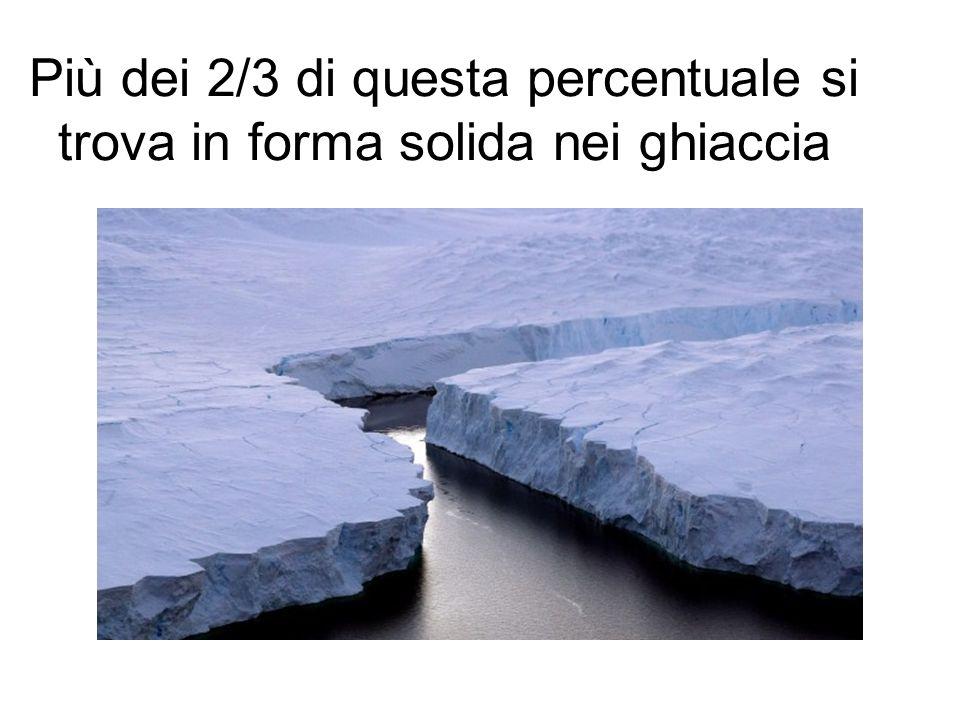 Più dei 2/3 di questa percentuale si trova in forma solida nei ghiaccia