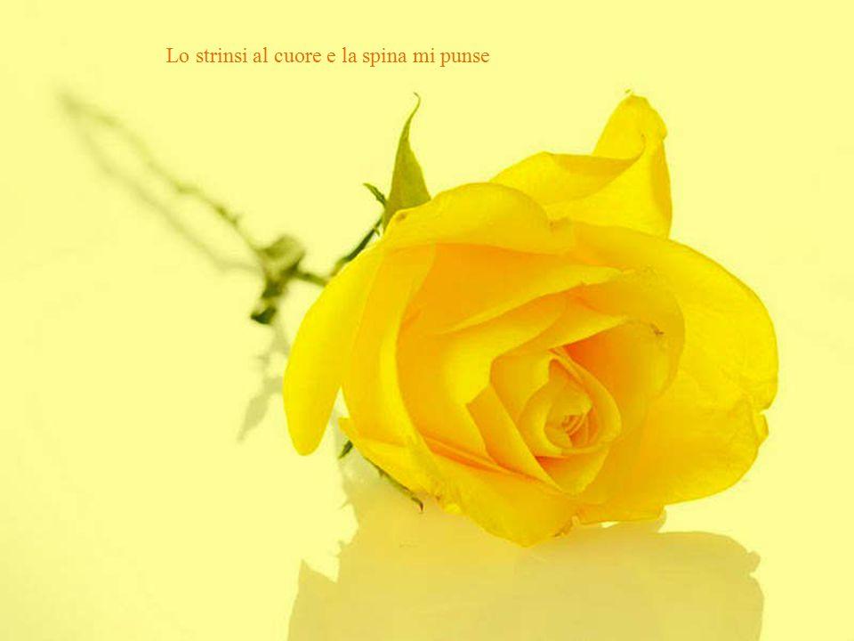 Colsi il tuo fiore, mondo Poesia di Rebindranath Tagore