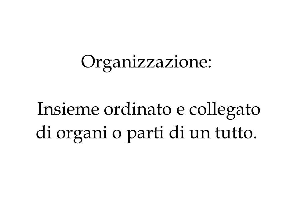 Organizzazione: Insieme ordinato e collegato di organi o parti di un tutto.