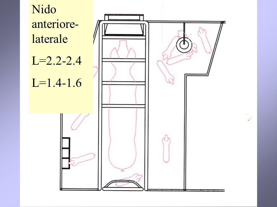 Nido anteriore- laterale L=2.2-2.4 L=1.4-1.6