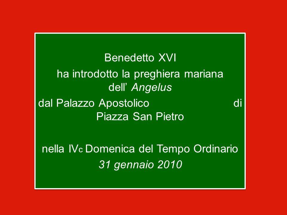 Benedetto XVI ha introdotto la preghiera mariana dell' Angelus dal Palazzo Apostolico di Piazza San Pietro nella IV c Domenica del Tempo Ordinario 31 gennaio 2010 Benedetto XVI ha introdotto la preghiera mariana dell' Angelus dal Palazzo Apostolico di Piazza San Pietro nella IV c Domenica del Tempo Ordinario 31 gennaio 2010
