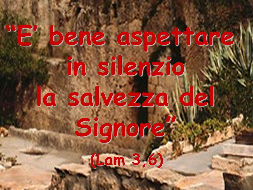 """""""E' bene aspettare in silenzio la salvezza del la salvezza delSignore"""" (Lam 3,6)"""