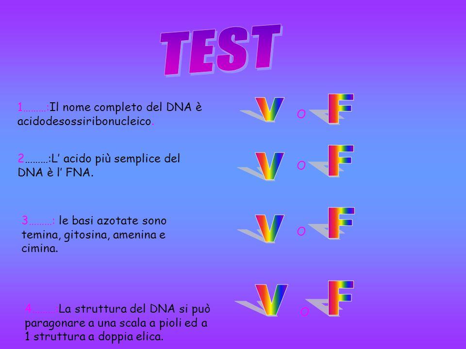 COMPLIMENTI!!!!!! HAI RISPOSTO ESATTAMENTE … IL NOME COMPLETO DEL DNA È acidodesossiribonucleico.