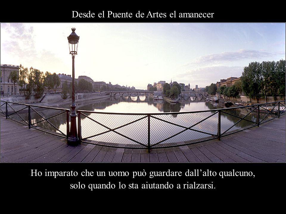 El Instituto de Francia & el Puente Nuevo Ho imparato che quando un neonato si aggrappa al pollice del padre, si aggrappa a lui per sempre.