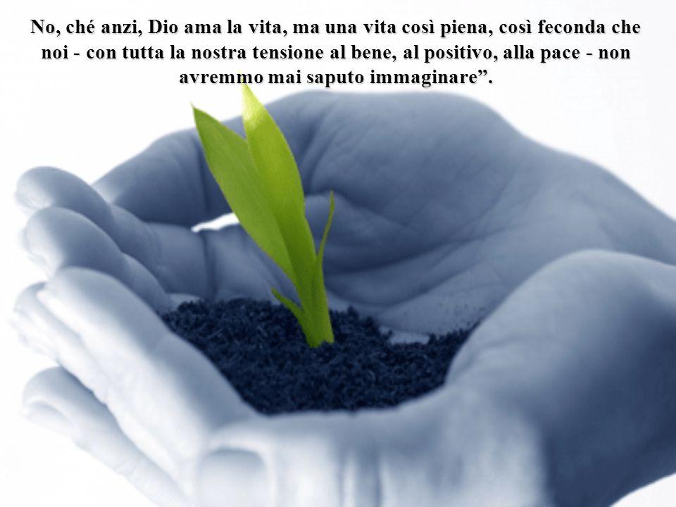 Non stanchiamoci mai nel fare il bene, i frutti ci saranno comunque, forse molto più tardi, forse altrove, ma ci saranno.