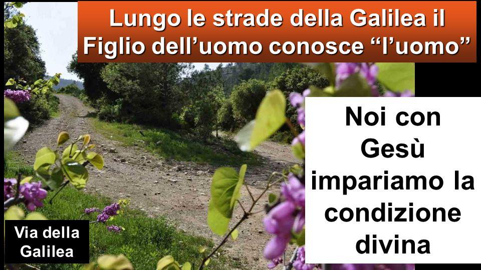 Lungo le strade della Galilea il Figlio dell'uomo conosce l'uomo Noi con Gesù impariamo la condizione divina Via della Galilea