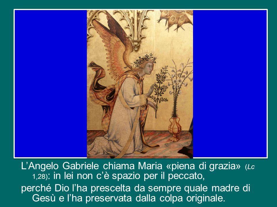 Il messaggio dell'odierna festa dell'Immacolata Concezione della Vergine Maria si può riassumere con queste parole: tutto è dono gratuito di Dio, tutt