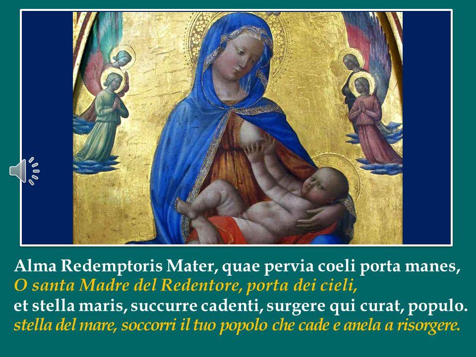 Impariamo da Maria, che ha tenuto costantemente lo sguardo fisso sul Figlio e il suo volto è diventato «la faccia che a Cristo più si somiglia» (Dante