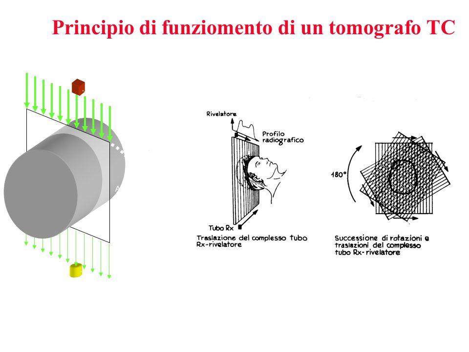 Source Detector Linear scan Angular scan Principio di funziomento di un tomografo TC