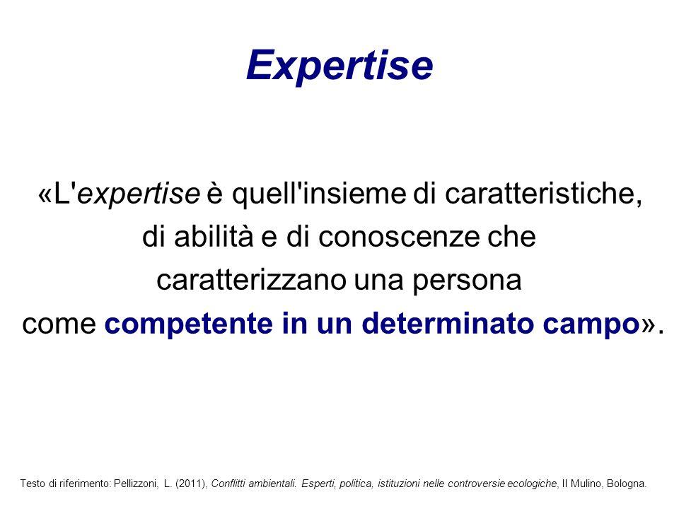 «L'expertise è quell'insieme di caratteristiche, di abilità e di conoscenze che caratterizzano una persona come competente in un determinato campo». E