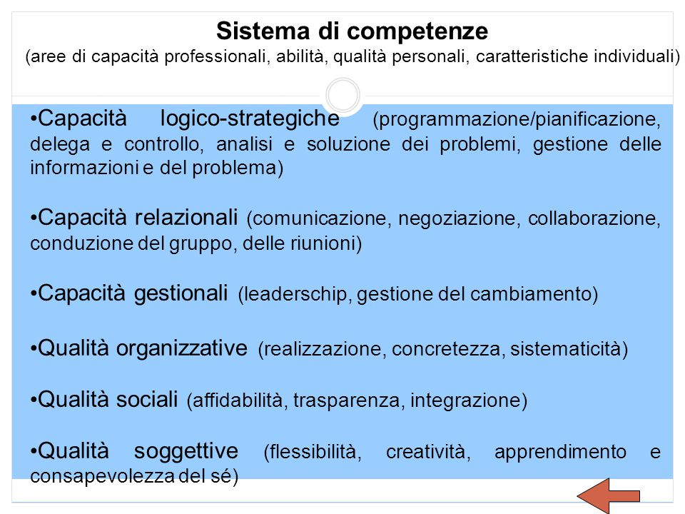 Sistema di competenze (aree di capacità professionali, abilità, qualità personali, caratteristiche individuali) Capacità logico-strategiche (programma