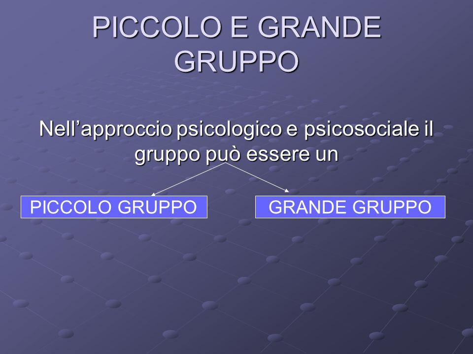 PICCOLO E GRANDE GRUPPO Nell'approccio psicologico e psicosociale il gruppo può essere un PICCOLO GRUPPOGRANDE GRUPPO