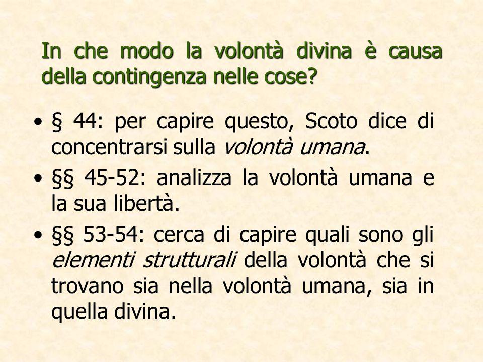 In che modo la volontà divina è causa della contingenza nelle cose? § 44: per capire questo, Scoto dice di concentrarsi sulla volontà umana. §§ 45-52: