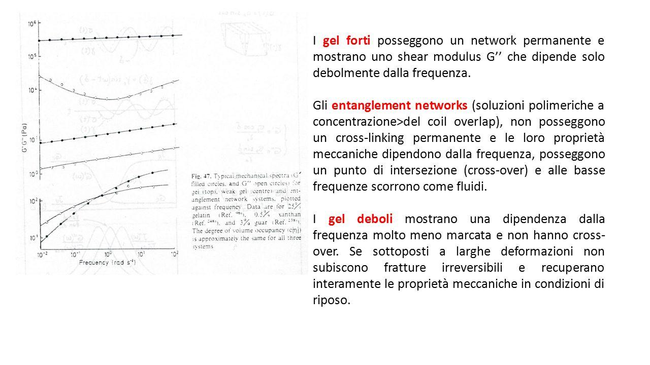 I gel forti posseggono un network permanente e mostrano uno shear modulus G'' che dipende solo debolmente dalla frequenza. Gli entanglement networks (