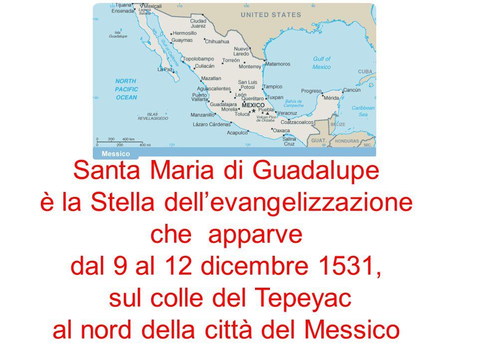 Santa Maria di Guadalupe è la Stella dell'evangelizzazione che apparve dal 9 al 12 dicembre 1531, sul colle del Tepeyac al nord della città del Messic