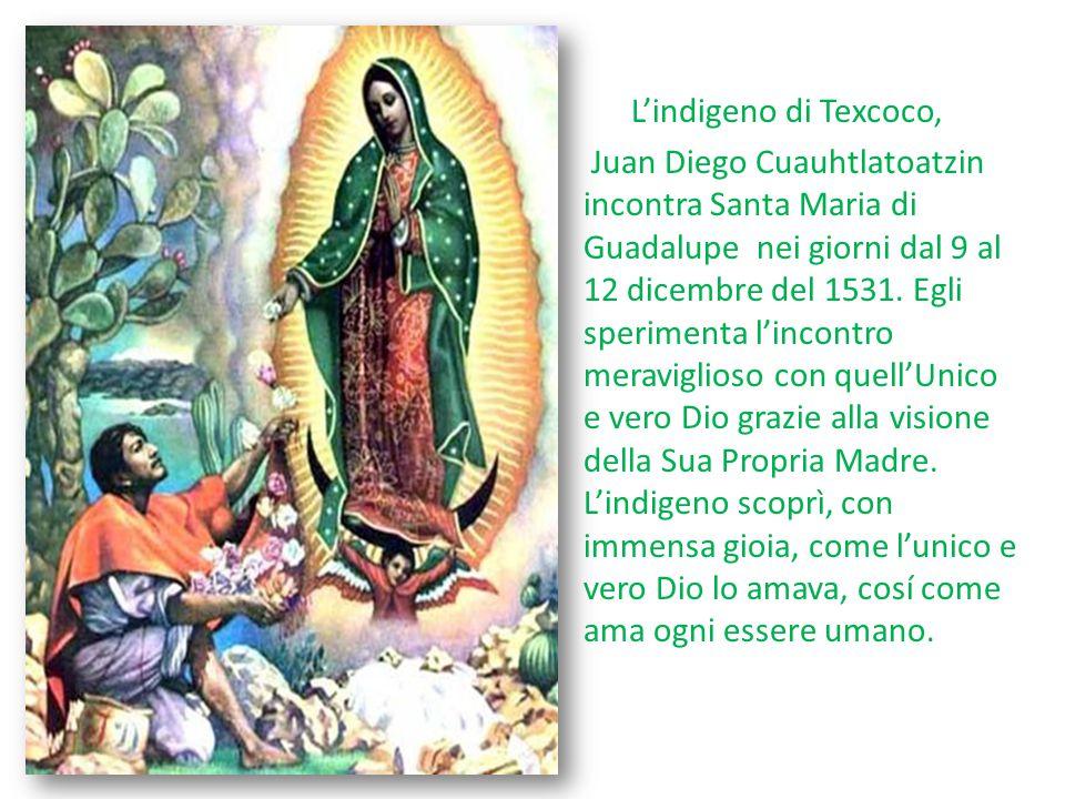 L'indigeno di Texcoco, Juan Diego Cuauhtlatoatzin incontra Santa Maria di Guadalupe nei giorni dal 9 al 12 dicembre del 1531. Egli sperimenta l'incont