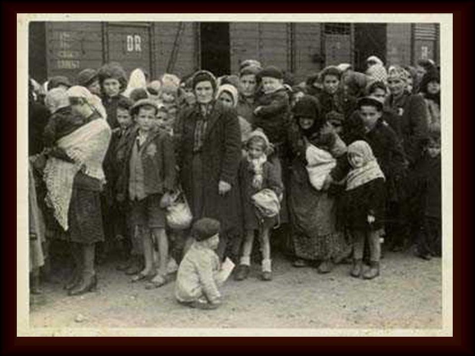 """"""" Erano ricchi e poveri, uomini e donne, sani e malati. sani e malati. C'erano bambini fra noi, molti, e c'erano vecchi alle soglie della morte, ma tu"""