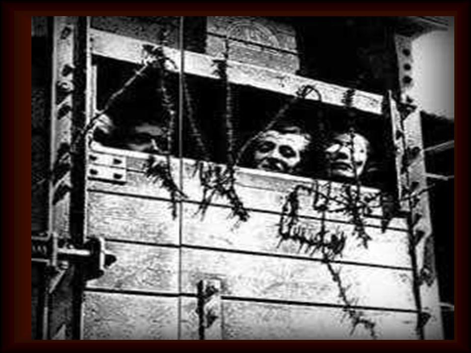 Le sue ceneri si mescolarono insieme a quelle di tanti altri condannati, nel forno crematorio; così il 14 agosto 1941 finiva la vita terrena di una de