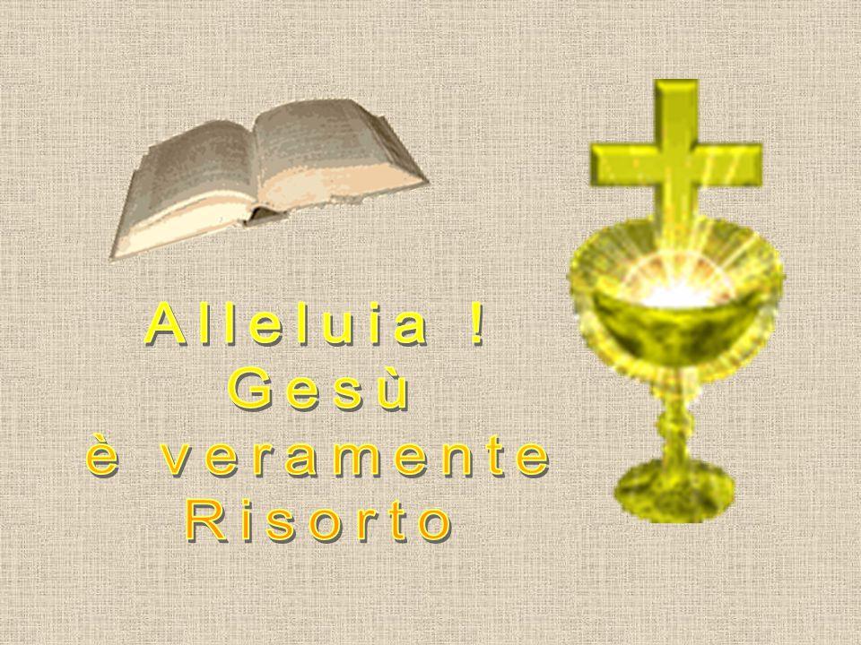 Preghiamo: Spirito Santo, attirami tu, perché io ami ciò che è santo. io ami ciò che è santo. Fortificami tu, Fortificami tu, perché io mai perda ciò