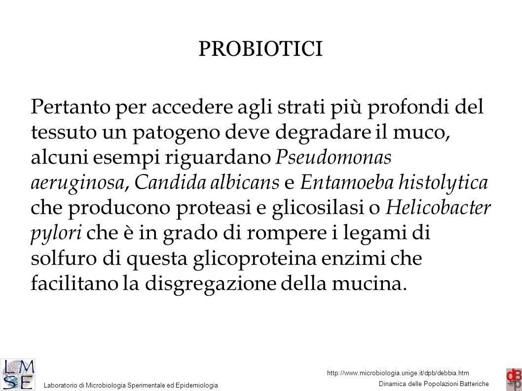 http://www.microbiologia.unige.it/dpb/debbia.htm Dinamica delle Popolazioni Batteriche Laboratorio di Microbiologia Sperimentale ed Epidemiologia 33 PROBIOTICI Pertanto per accedere agli strati più profondi del tessuto un patogeno deve degradare il muco, alcuni esempi riguardano Pseudomonas aeruginosa, Candida albicans e Entamoeba histolytica che producono proteasi e glicosilasi o Helicobacter pylori che è in grado di rompere i legami di solfuro di questa glicoproteina enzimi che facilitano la disgregazione della mucina.