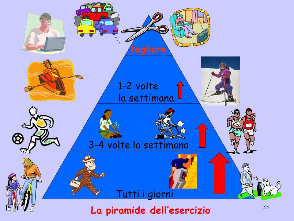 33 tagliare 1-2 volte la settimana 3-4 volte la settimana Tutti i giorni La piramide dell'esercizio
