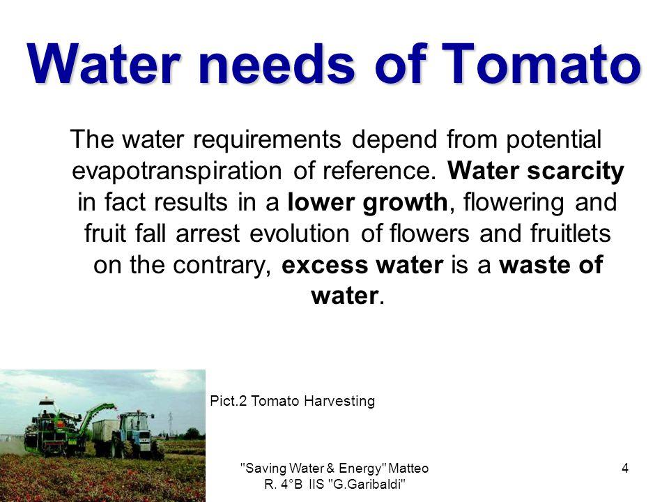 Saving Water & Energy Matteo R.