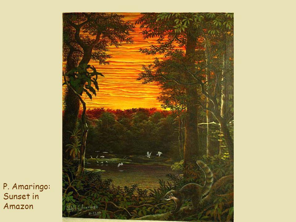 P. Amaringo: Sunset in Amazon