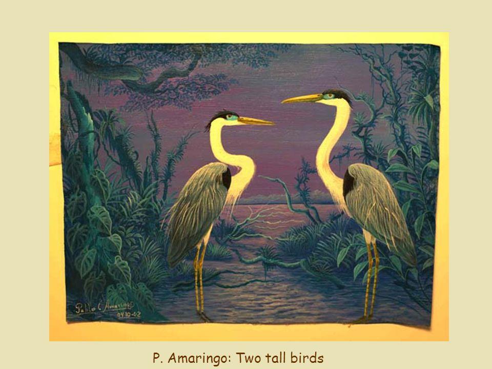 P. Amaringo: Two tall birds
