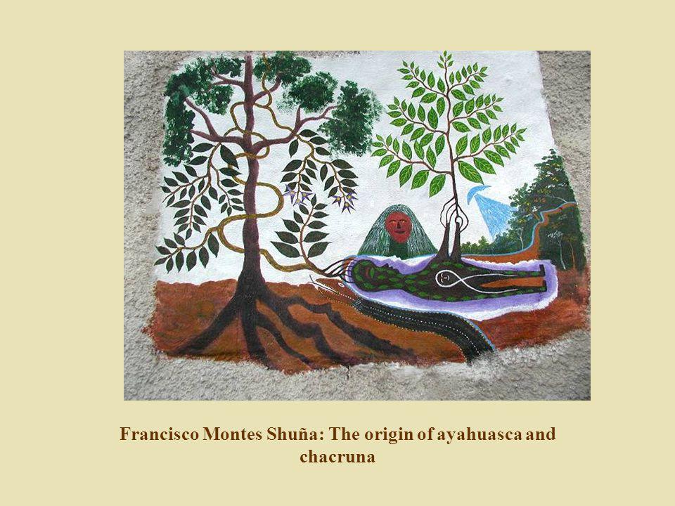 Francisco Montes Shuña: The origin of ayahuasca and chacruna