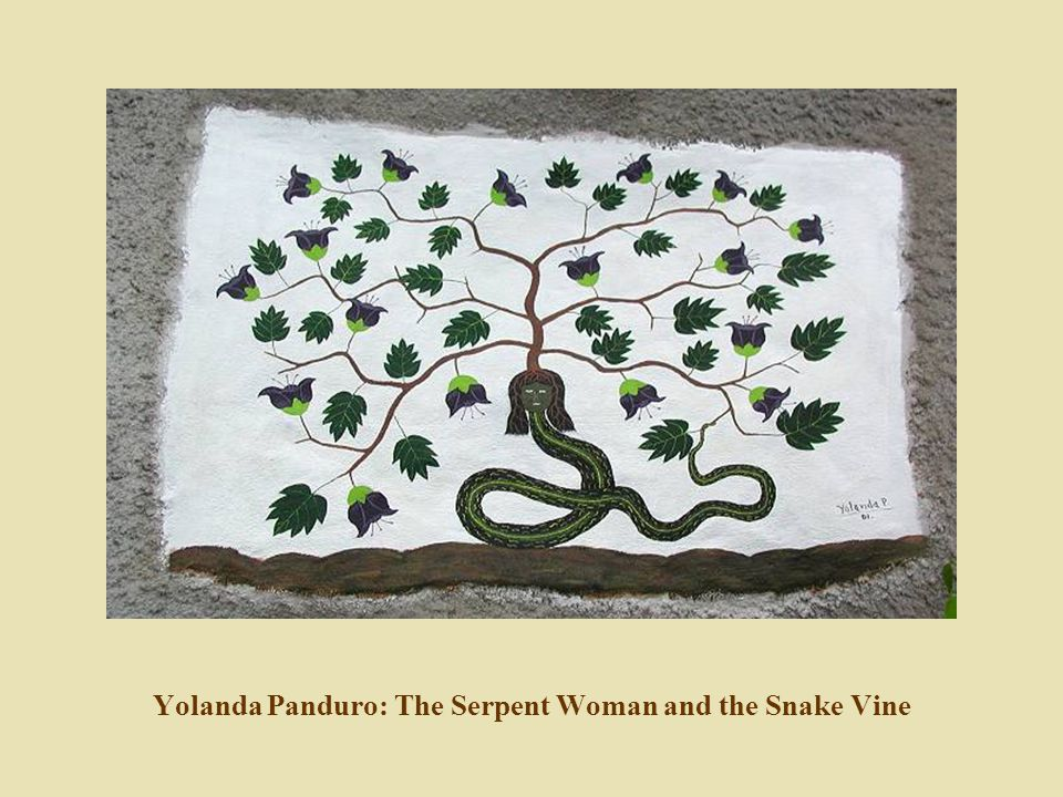 Yolanda Panduro: The Serpent Woman and the Snake Vine