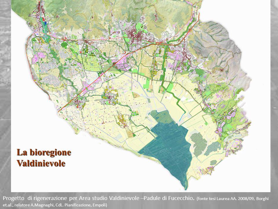 Progetto di rigenerazione per Area studio Valdinievole –Padule di Fucecchio. (fonte tesi Laurea AA. 2008/09, Borghi et.al., relatore A.Magnaghi, CdL.