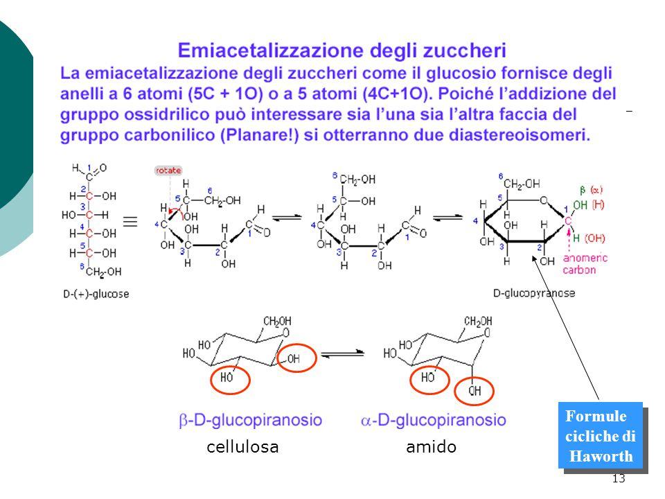 14 Strutture cicliche degli zuccheri sono nominate in funzione dell'anello a 5 o 6 termini.