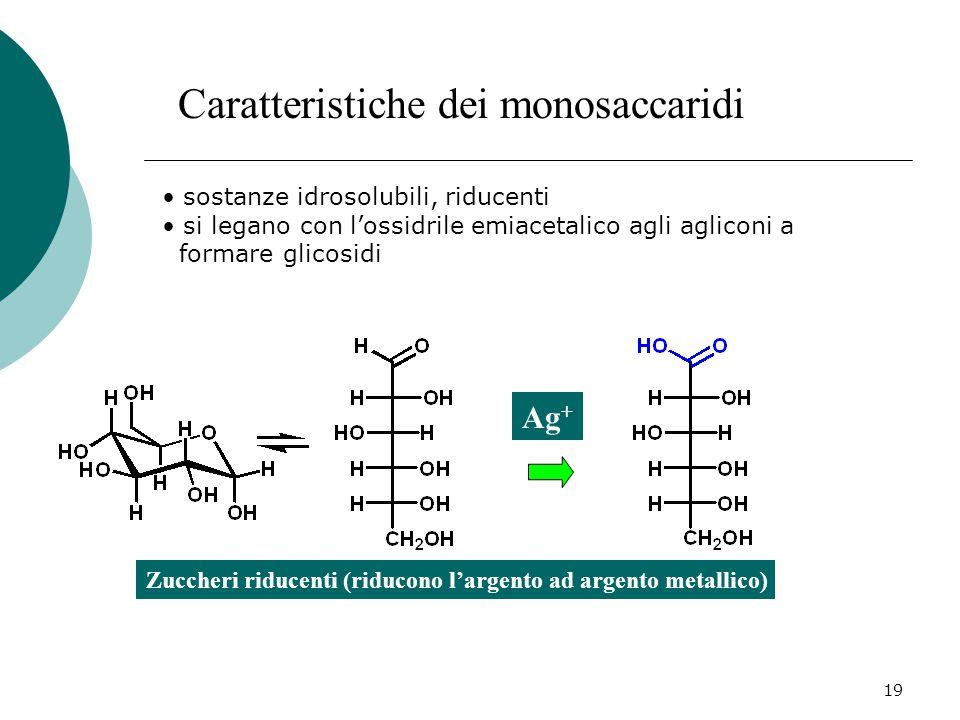 19 Caratteristiche dei monosaccaridi sostanze idrosolubili, riducenti si legano con l'ossidrile emiacetalico agli agliconi a formare glicosidi Zuccher