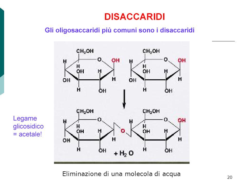 20 Eliminazione di una molecola di acqua