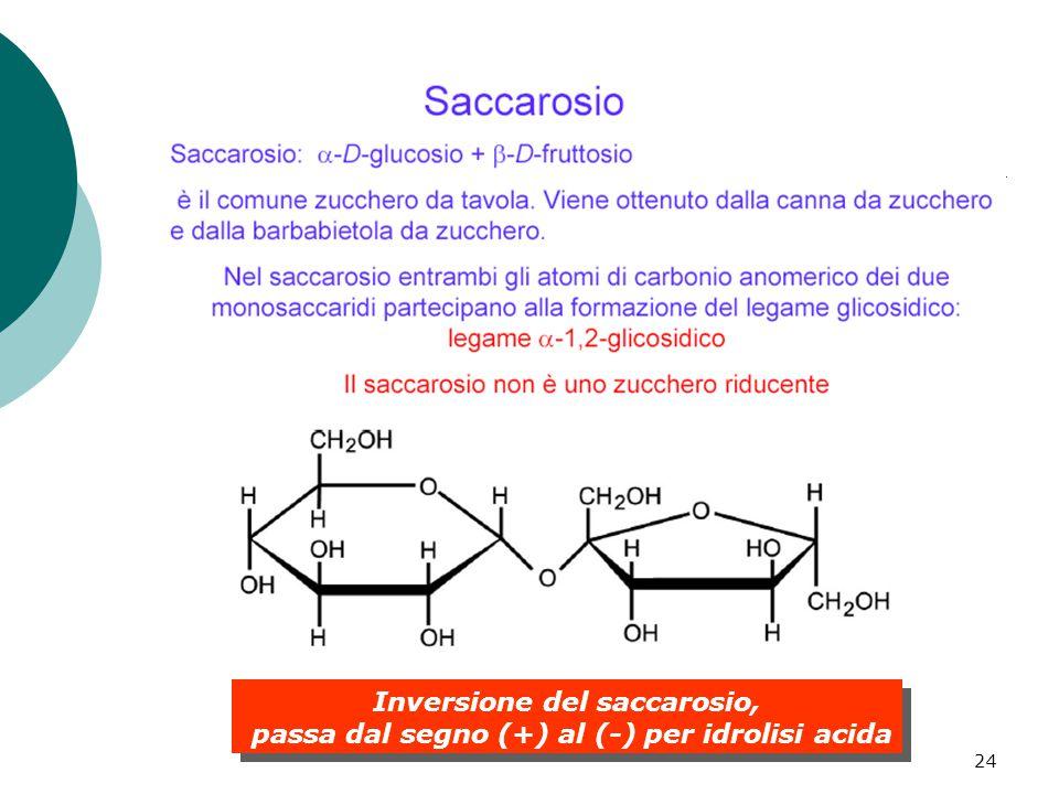 24 Inversione del saccarosio, passa dal segno (+) al (-) per idrolisi acida Inversione del saccarosio, passa dal segno (+) al (-) per idrolisi acida