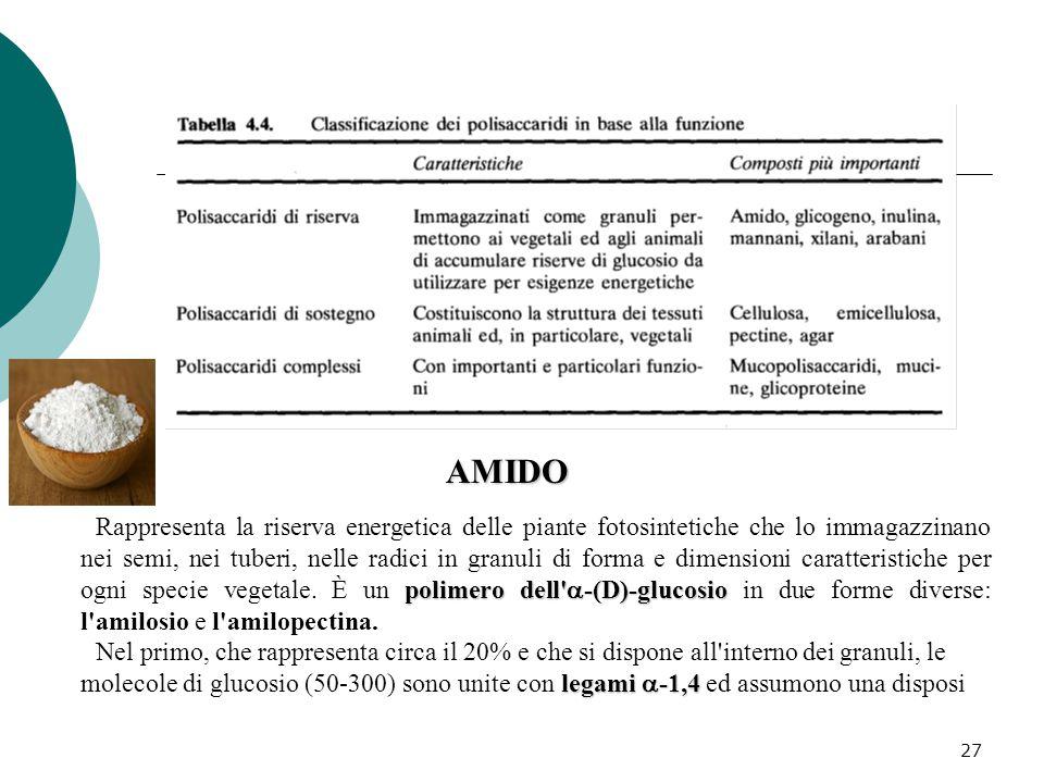 27 polimero dell'  -(D)-glucosio Rappresenta la riserva energetica delle piante fotosintetiche che lo immagazzinano nei semi, nei tuberi, nelle radic