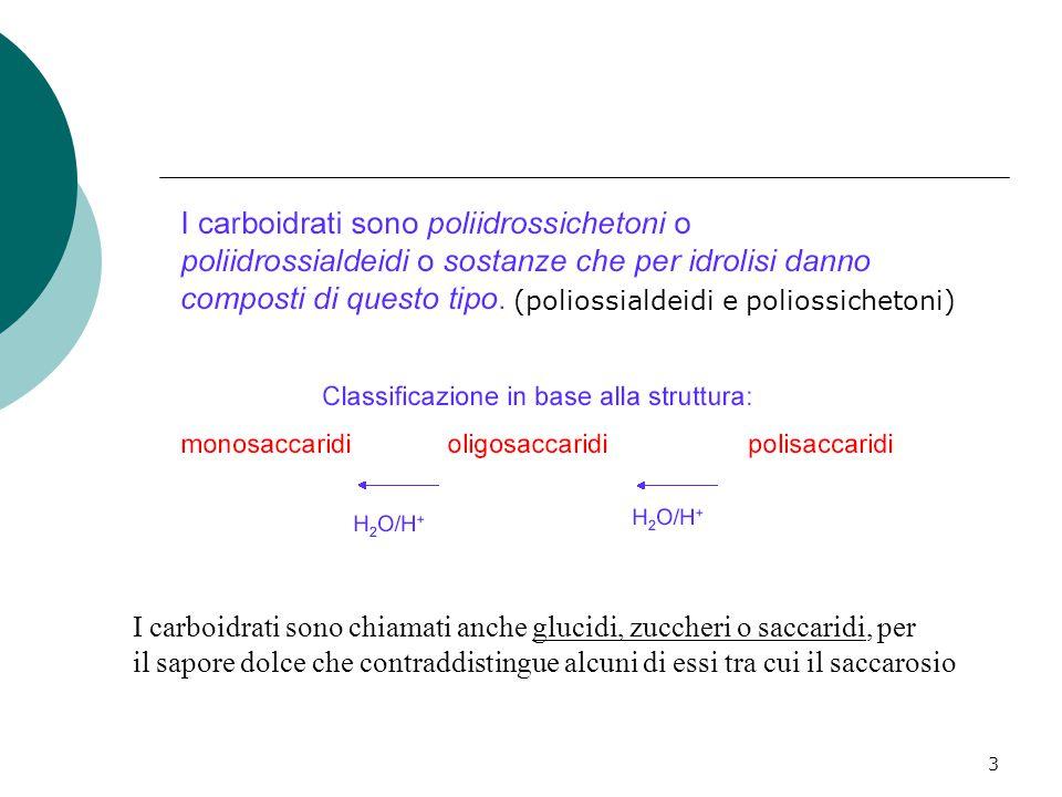 3 (poliossialdeidi e poliossichetoni) I carboidrati sono chiamati anche glucidi, zuccheri o saccaridi, per il sapore dolce che contraddistingue alcuni