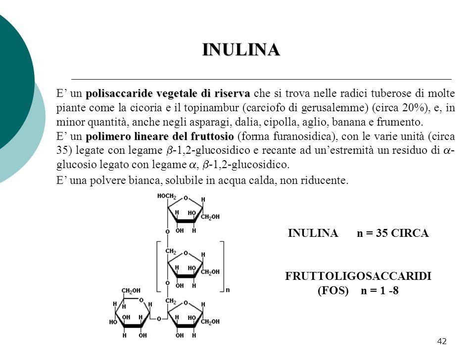 42 polisaccaride vegetale di riserva E' un polisaccaride vegetale di riserva che si trova nelle radici tuberose di molte piante come la cicoria e il t