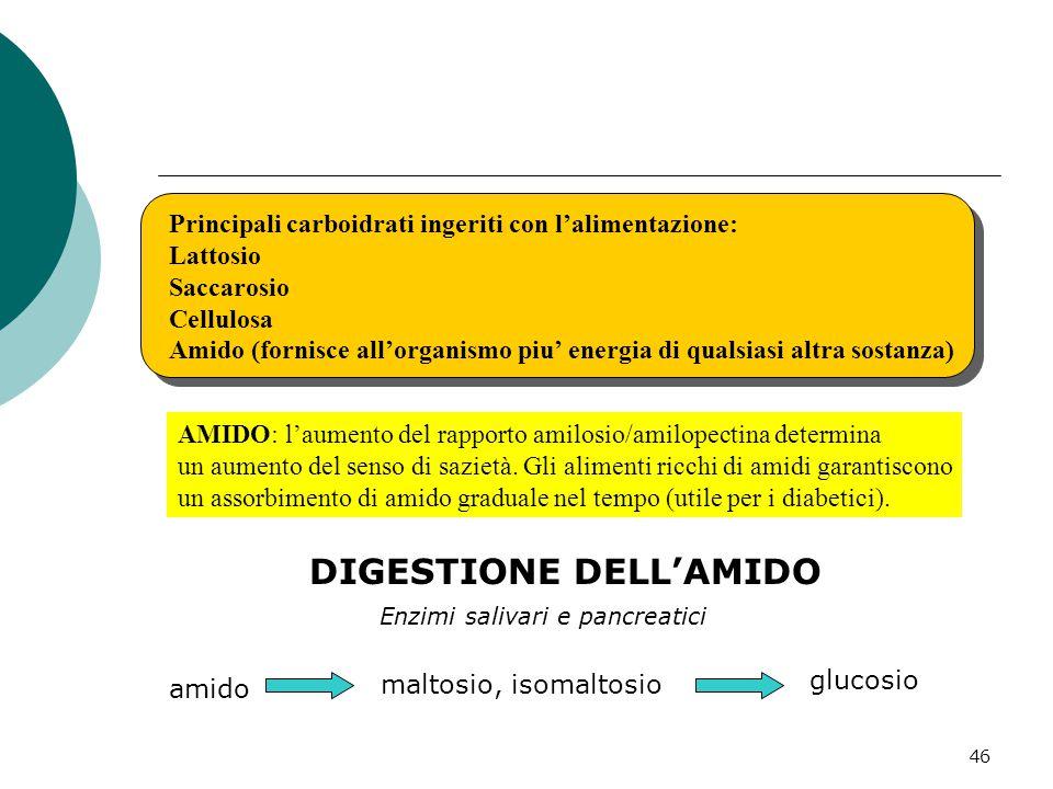46 Principali carboidrati ingeriti con l'alimentazione: Lattosio Saccarosio Cellulosa Amido (fornisce all'organismo piu' energia di qualsiasi altra so
