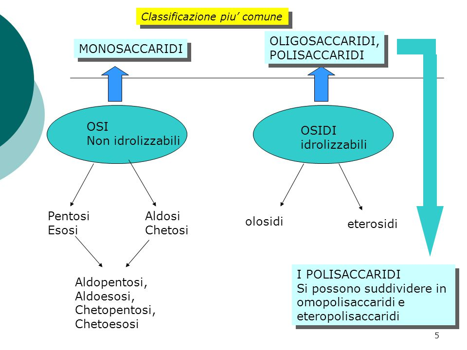 5 OSI Non idrolizzabili OSIDI idrolizzabili olosidi eterosidi Pentosi Esosi Aldosi Chetosi Aldopentosi, Aldoesosi, Chetopentosi, Chetoesosi MONOSACCARIDI OLIGOSACCARIDI, POLISACCARIDI OLIGOSACCARIDI, POLISACCARIDI I POLISACCARIDI Si possono suddividere in omopolisaccaridi e eteropolisaccaridi I POLISACCARIDI Si possono suddividere in omopolisaccaridi e eteropolisaccaridi Classificazione piu' comune