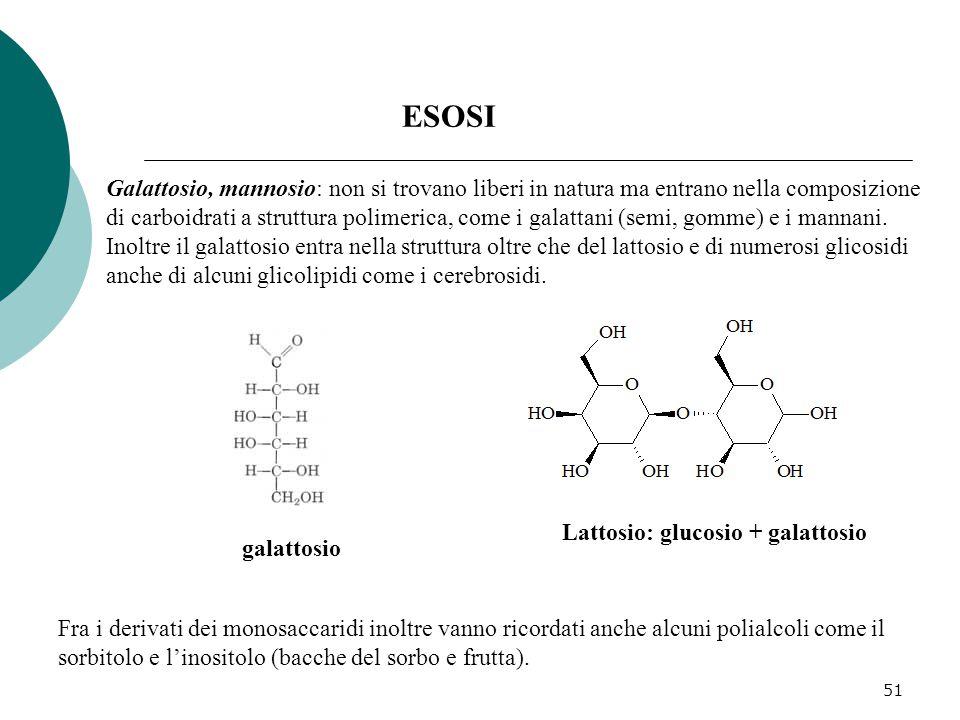 51 Galattosio, mannosio: non si trovano liberi in natura ma entrano nella composizione di carboidrati a struttura polimerica, come i galattani (semi,
