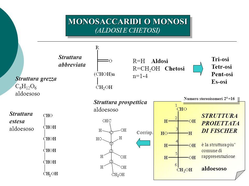 6 MONOSACCARIDI O MONOSI (ALDOSI E CHETOSI) MONOSACCARIDI O MONOSI (ALDOSI E CHETOSI) Struttura abbreviata R=H Aldosi R=CH 2 OH Chetosi n=1-4 Tri-osi Tetr-osi Pent-osi Es-osi Struttura grezza C 6 H 12 O 6 aldoesoso STRUTTURA PROIETTATA DI FISCHER è la struttura piu' comune di rappresentazione aldoesoso Struttura prospettica aldoesoso Struttura estesa aldoesoso Corrisp.