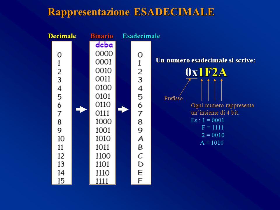 Rappresentazione ESADECIMALE BinarioDecimaleEsadecimale Un numero esadecimale si scrive: 0x1F2A Prefisso Ogni numero rappresenta un'insieme di 4 bit.