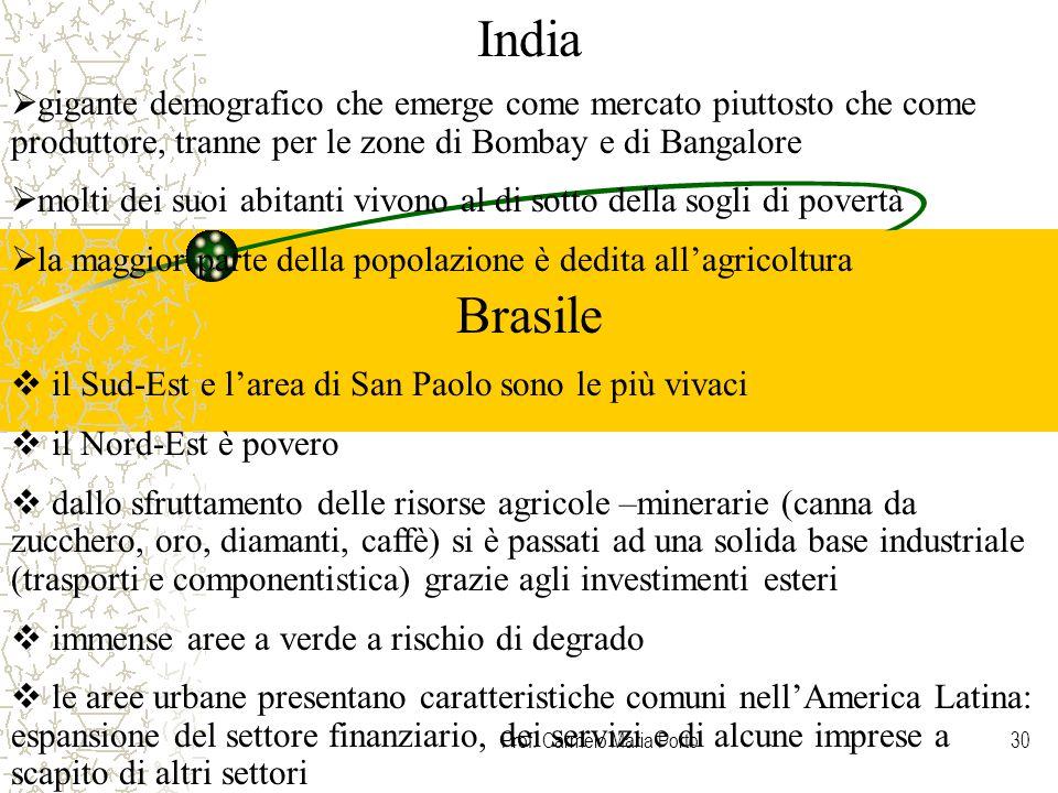 Prof. Carmelo Maria Porto30  gigante demografico che emerge come mercato piuttosto che come produttore, tranne per le zone di Bombay e di Bangalore 