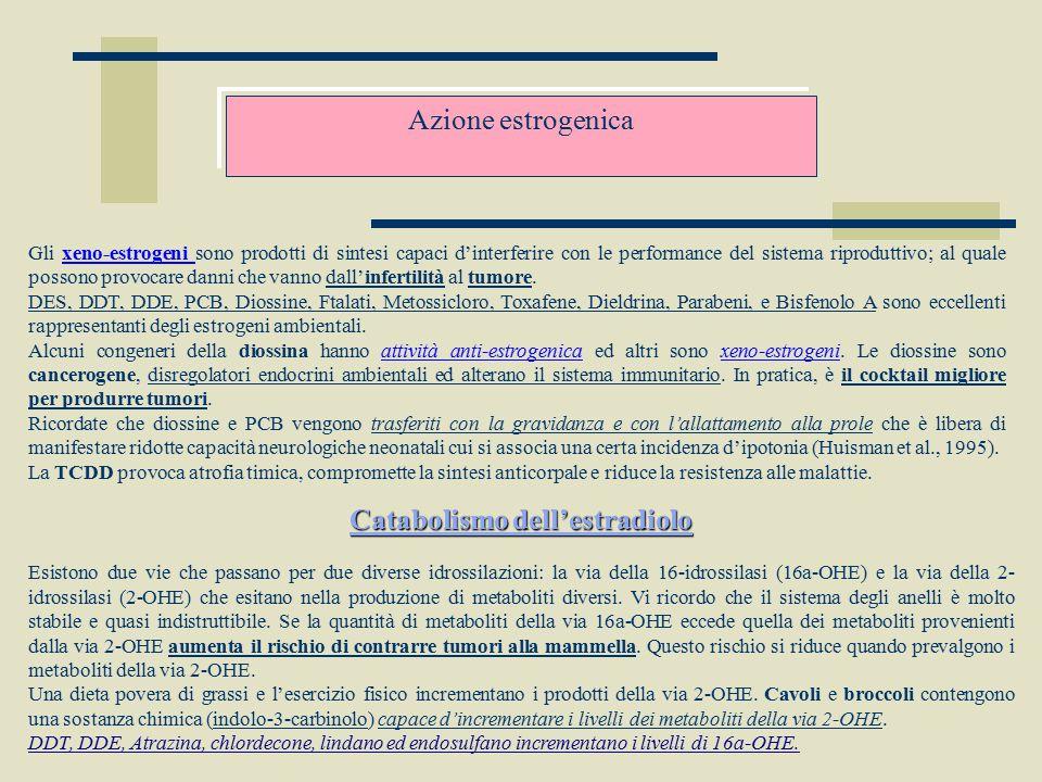 Azione estrogenica Gli xeno-estrogeni sono prodotti di sintesi capaci d'interferire con le performance del sistema riproduttivo; al quale possono prov