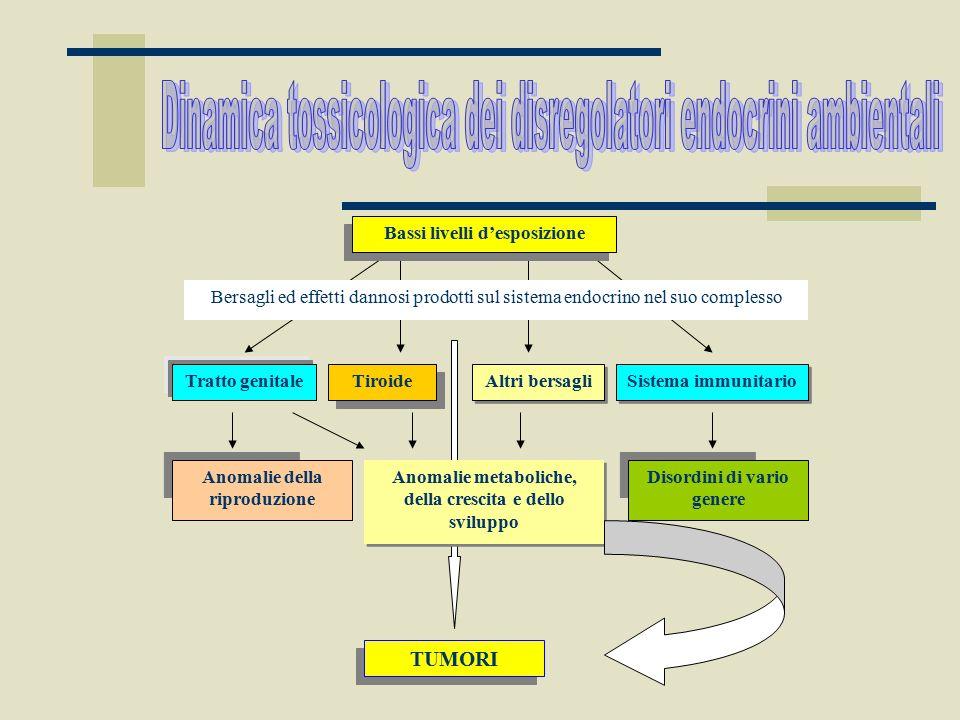 Bassi livelli d'esposizione Bersagli ed effetti dannosi prodotti sul sistema endocrino nel suo complesso Tratto genitale Tiroide Sistema immunitario A