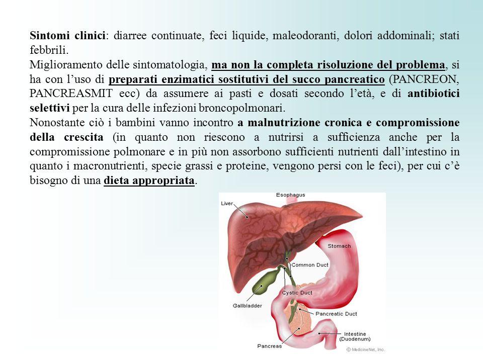Sintomi clinici: diarree continuate, feci liquide, maleodoranti, dolori addominali; stati febbrili. Miglioramento delle sintomatologia, ma non la comp